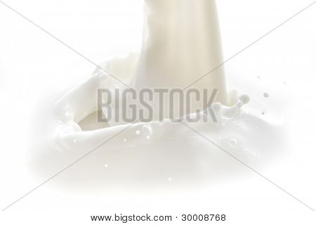 pouring milk splash isolated on white background