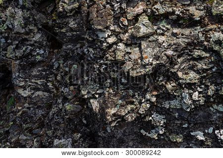 Plane Of Dark Gray Boulder. Beautiful Rough Rock Surface Close Up. Colorful Textured Stone. Amazing