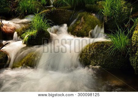 Spring; Mountain Brook , Stream , Water In Movement