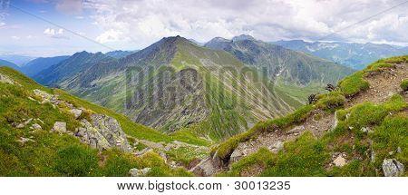 Summer mountain landscape in the Romanian Carpathians