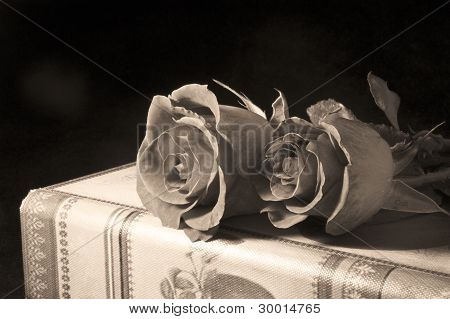 Red Roses And Antique Books