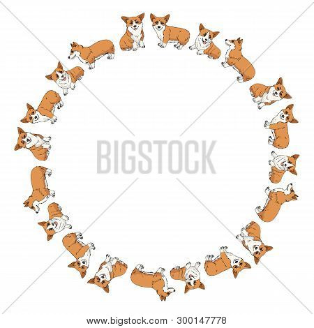 Round Frame Made Of Cute Pembroke Welsh Corgi In Different Poses. Vector Dog Illustration For Your D