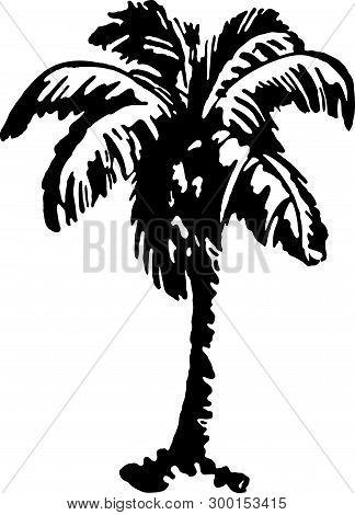 Palm Tree 2 - Retro Ad Art Illustration