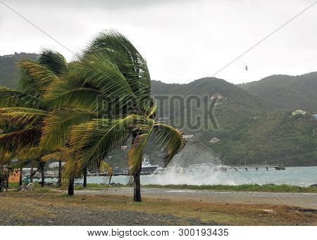 The Wind Picks Up From A Tropical Storm Approaching The Caribbean Island Of Tortola