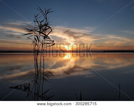 Evening On Lake Big Corner. Omsk Region, Siberia, Russia