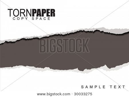 Template for presentation or web page with torn white paper
