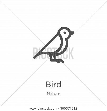 Bird Icon Isolated On White Background From Nature Collection. Bird Icon Trendy And Modern Bird Symb
