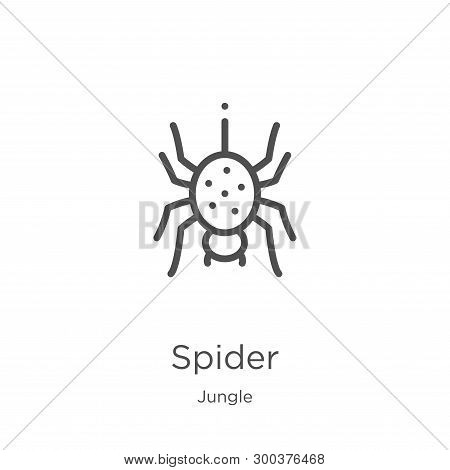 Spider Icon Isolated On White Background From Jungle Collection. Spider Icon Trendy And Modern Spide