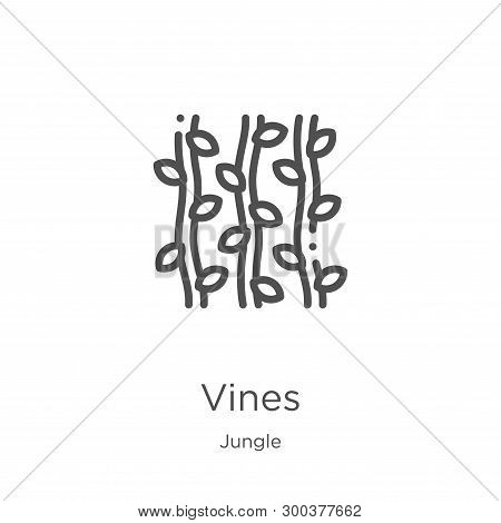 Vines Icon Isolated On White Background From Jungle Collection. Vines Icon Trendy And Modern Vines S