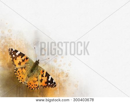 Watercolor Image Of A Butterfly On A Vintage Background. Butterfly Close-up. Handmade Illustration.