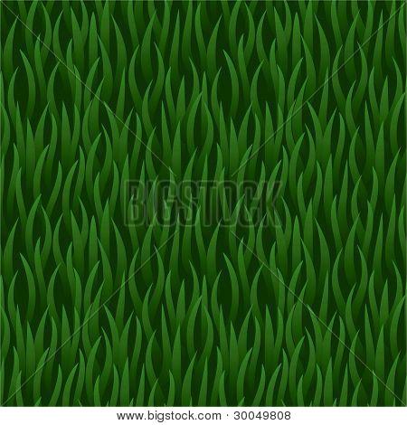 green grass field seamless background