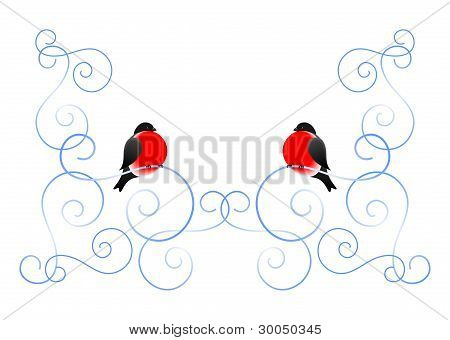 Bullfinch And A Winter Pattern