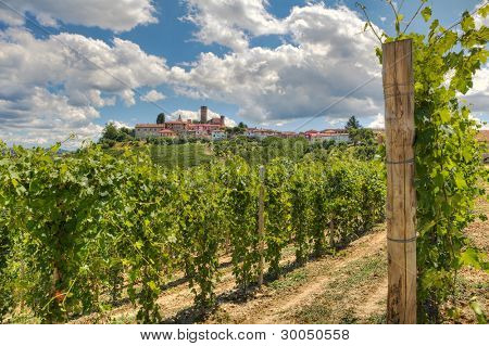 Horizontal oriented image of beautiful view on vineyards and small town on the hill in Piedmont, Northern Italy.