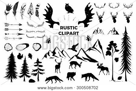 Hand Drawn Vintage Antlers, Feathers, Arrows. Decorative Vector Design Set. Rustic Animal, Bundle, E