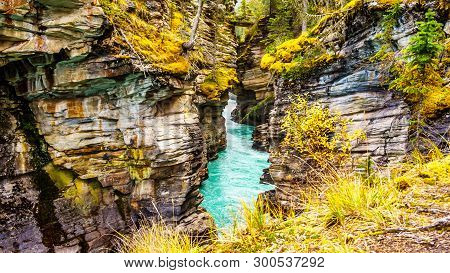 The Turquoise Waters Of The Athabasca River Flows Through A Canyon Right After The Athabasca Falls I