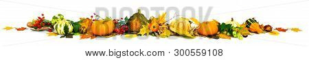 Autumn Leaves, Berries And Pumpkins As A Border, Fall Background, Space