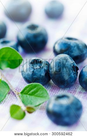 blueberries close up on cloth