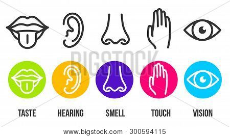 Creative Vector Illustration Line Icon Set Of Five Human Senses. Vision, Hearing, Smell, Touch, Tast
