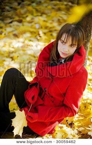Under Autumn Tree
