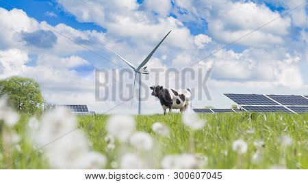 Wind Turbine, Solar Cell And Cow On The Green Grass