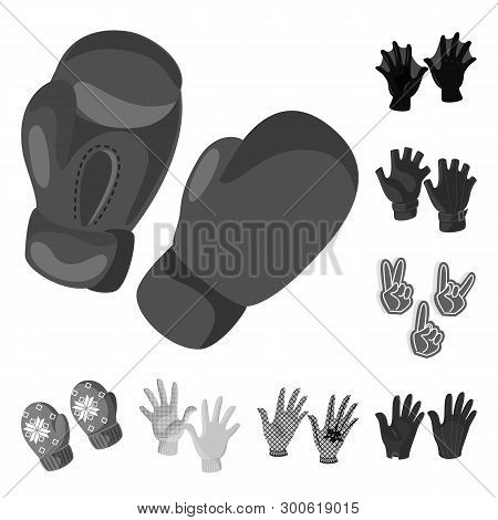 Isolated object of property and distinctive logo. Set of property and textile stock vector illustration. poster