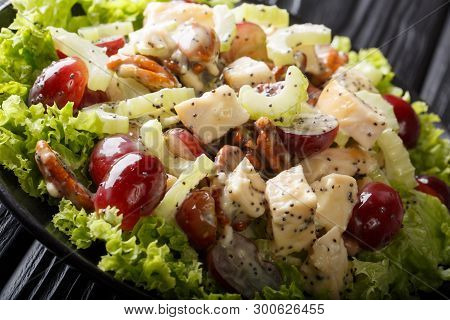 Delicious Appetizer Sonoma Salad With Chicken Breast, Celery, Pecans And Grapes Covered With Sauce C