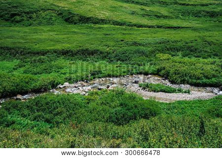 Mountain Creek In Green Valley Among Rich Vegetation Of Highland In Sunny Day. Fast Water Stream In