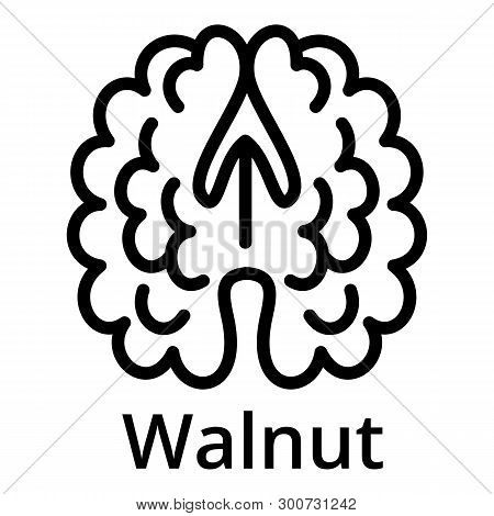 Walnut Icon. Outline Walnut Vector Icon For Web Design Isolated On White Background