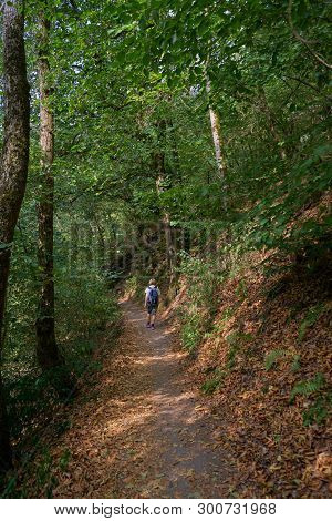 Moselkern, Germany - Aug 8, 2018: Solitary Female Hiker Walks On A Dirt Path Through A Beautiful Sec