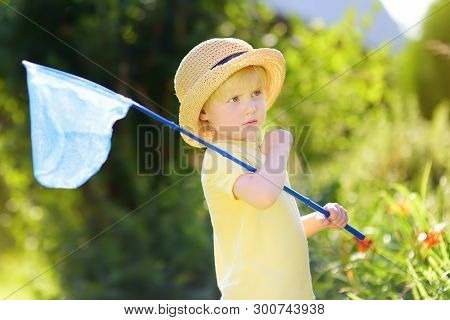 Cute Little Boy Catches Butterflies With Scoop-net On Sunny Meadow. Young Explorer Of The Nature. Su