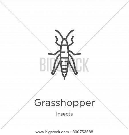 Grasshopper Icon. Element Of Insects Collection For Mobile Concept And Web Apps Icon. Outline, Thin