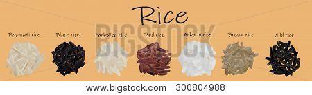 Rice Set Black, Red, Basmati, Brown, Wild, Parboiled, Arborio. 3d Vector Illustration, Rice Close Up