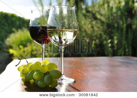 Pair of wineglasses and bunch of grapes. Lavaux region, Switzerland