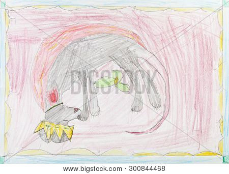 Top View Of Sleeping Dog With Crown On Carpet Of Hand-drawn By Colour Pencils On White Paper