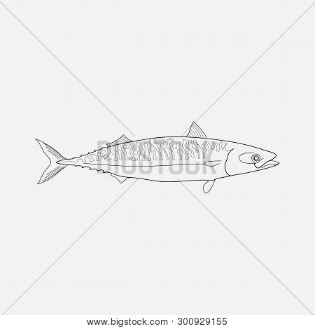 Mackerel Icon Line Element. Vector Illustration Of Mackerel Icon Line Isolated On Clean Background F