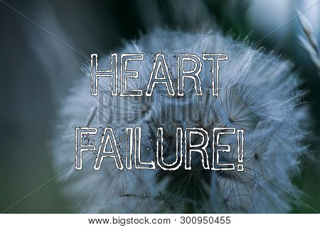 Word Writing Text Heart Failure. Business Concept For The Severe Failure Of The Heart To Function Pr