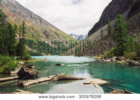 Dry Logs Float In Water Of Mountain Lake On Background Of Giant Mountains With Vegetation Of Highlan