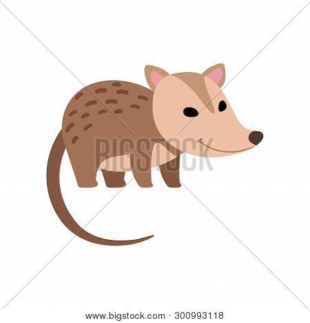 Cute Opossum Wild Animal Side View Vector Illustration
