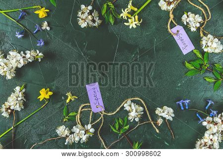 Spring White Apricot Blooming Branches And Yellow An Blue Hyacinth Over Dark Green Background. Sprin