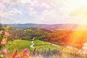 Famous Heart shaped wine road in Slovenia - Austria in summer, Heart form - Herzerl Strasse, vineyards in summer, Spicnik tourist spot poster