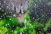 Background wet- raindrop realistic. Water splash shower- bad weather. Window- soap foam. Rainwater- liquid splash abstract poster