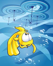 the goldfish choice