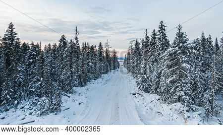 Winter Forest With Snowy Trees, Aerial View. Winter Nature, Aerial Landscape With Frozen River, Tree