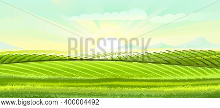 Hills And Meadows. Haymaking Pastures. Agricultural Farm Land. Green Grass. Grassland For Farming. B