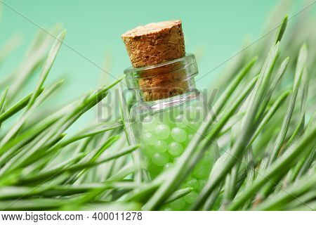 Glass Bottle With Green Granules And A Pine Branch. Homeopathic Remedies