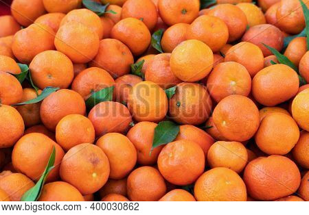 A Group Of Oranges And Mandarins Of Various Sizes, Photographed At The City Market. Central Focus, P