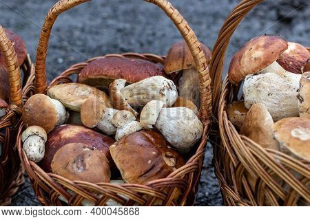 Paved Country Road In The Mountains And Three Baskets Of Large Porcini Mushrooms For Sale. Magnifice