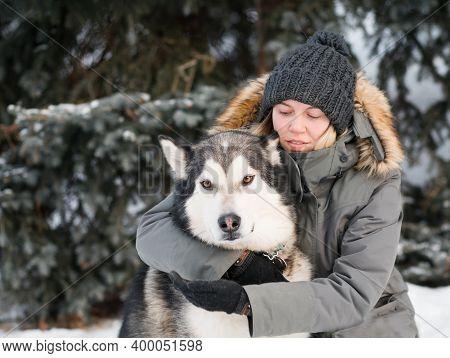 European Woman Embracing Alaskan Malamute In Winter Forest. Close Up.