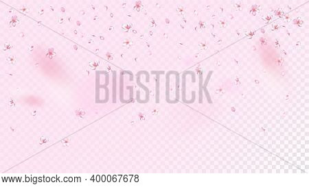 Nice Sakura Blossom Isolated Vector. Magic Falling 3d Petals Wedding Frame. Japanese Beauty Spa Flow