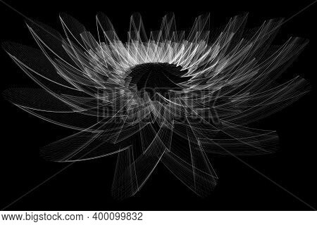 Images Of Abstract Elements On A Black Background That Create The Image Of A White Lotus Flower.